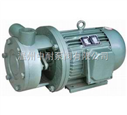 1W系列-1W系列直联式单级漩涡泵