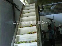 工程塑料链板式升运机