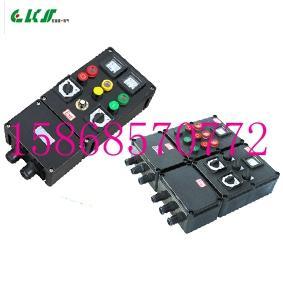 订做防爆防腐配电箱BXMX8050-380V IP65 WF2(化工厂用)