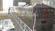 隧道食品微波干燥灭菌机