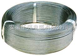 铠装伴热电缆