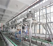 安徽包装自动化生产线