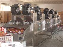 蔬菜风干机 翻转式风干机  网带式风干机  质量好价格低