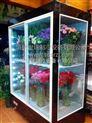 世瑞 立式鲜花柜 鲜花冷藏柜