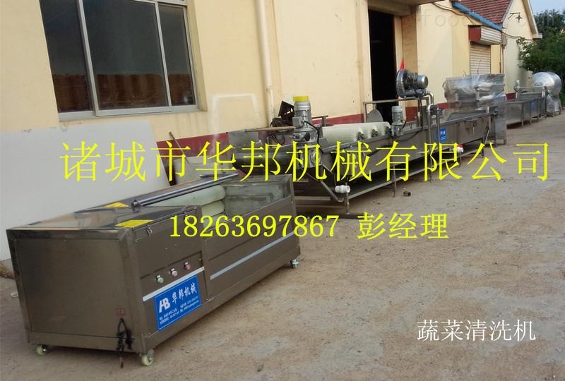 华邦净菜加工所需设备介绍 净菜设备 蔬菜清洗机