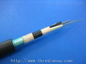 GYXTS-4A1b-62.5/125多模光缆
