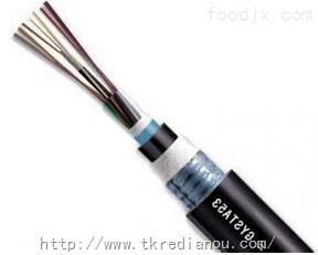GYTY53-24A1b24芯多模通信光缆
