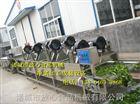 fx-1000玉米清洗风干机 常温风玉米风干机诸城放心机械