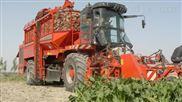 供应五业农牧10-1自走式青饲料收获机价格