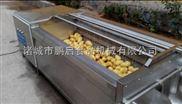 全自动高产量-土豆清洗机