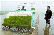 乘坐式水稻插秧机