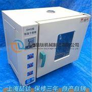 电热干燥箱202-2A使用方法,电热恒温干燥箱价格,202-2A恒温干燥箱型号