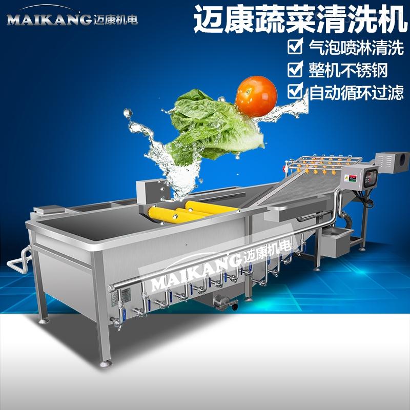 绣球菌清洗机 菌菇蘑菇气泡冲浪清洗机 蔬菜加工成套设备
