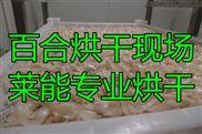 莱能百合烘干机 专业热泵干燥机 个性化定制更高效