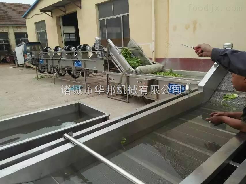 供应净菜加工流水线  蔬菜清洗机 蔬菜风干机 辣椒清洗机