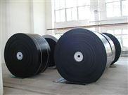 尼龙片基带,尼龙锭带,无缝环型平皮带,轻型输送带(图)