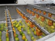 蔬菜清洗设备 气泡大型洗菜机 中草药清洗机