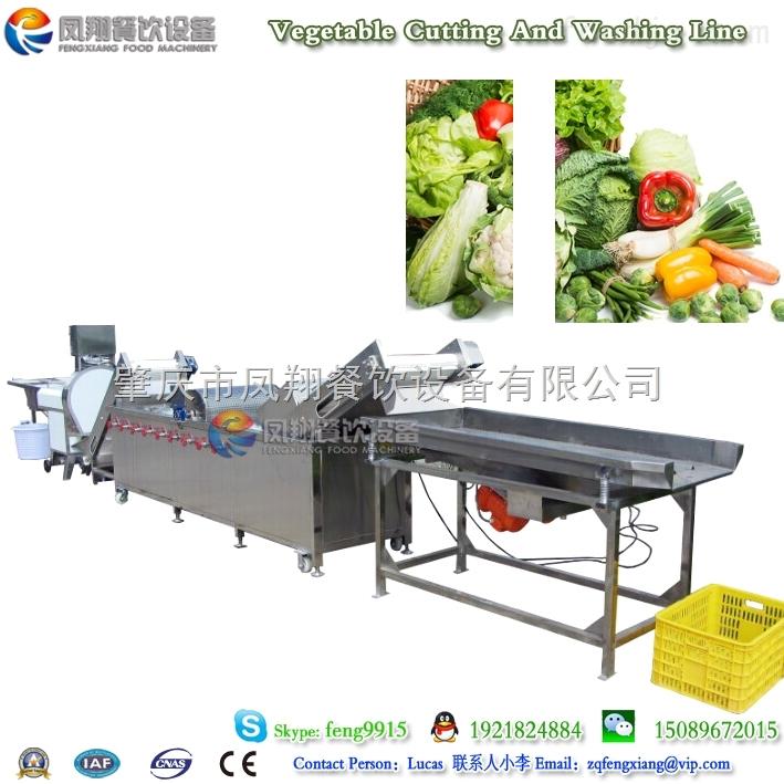 肇庆凤翔 干净菜加工生产线 多功能蔬菜清洗线 蔬菜沥水线