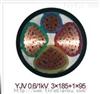 YJV YJV22电力电缆