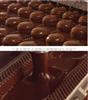 合强供应HQ-400型巧克力涂衣机 食品涂层生产线 饼干涂淋机